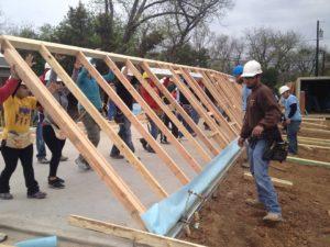 habitat build