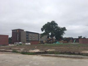 Sustainable Waco: Growing Green