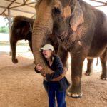 A Heart as Big as An Elephant